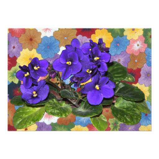 African violet custom invite
