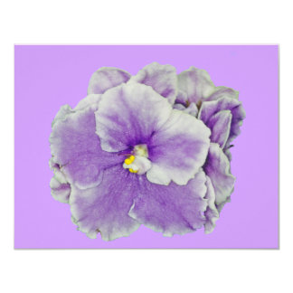 African Violet Purple 11 Cm X 14 Cm Invitation Card