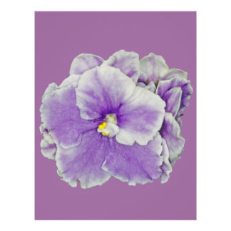 African Violet Purple Personalized Flyer