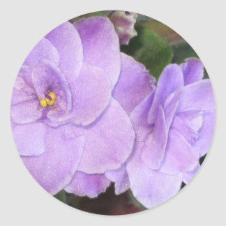 African Violets Classic Round Sticker