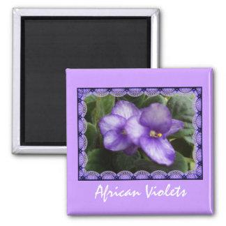 African Violets Magnet