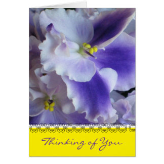 African Violets Thinking of You Card