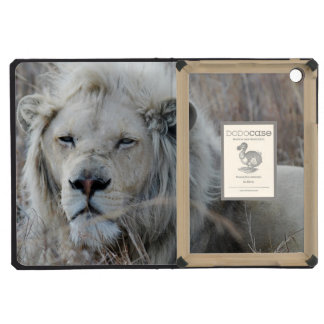 African white lion resting iPad mini cases