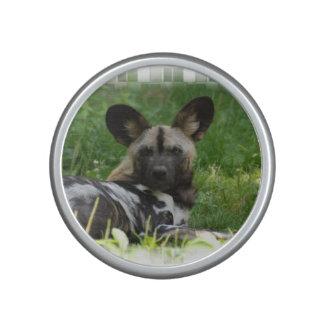 African Wild Dog Bluetooth Speaker