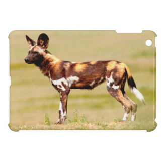 African Wild Dog (Lycaon Pictus) Standing Case For The iPad Mini