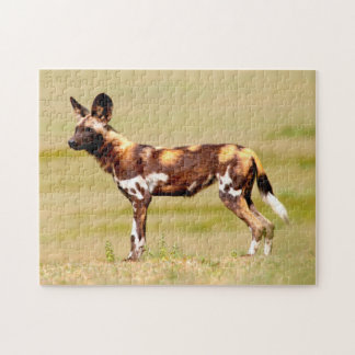 African Wild Dog (Lycaon Pictus) Standing Jigsaw Puzzle