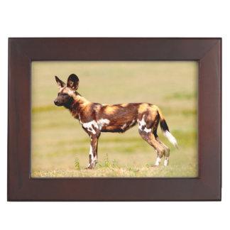 African Wild Dog (Lycaon Pictus) Standing Keepsake Box