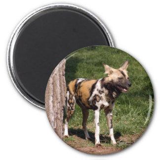 African Wild Dog Magnet