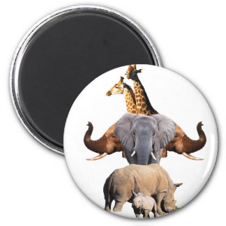 African Wildlife Totem Magnets