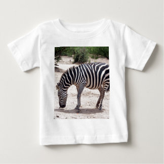 African zebra at the zoo baby T-Shirt