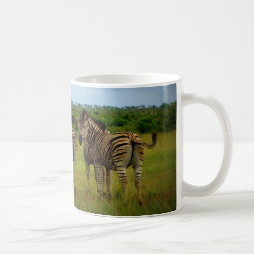 African Zebras in a Natural Setting Mugs