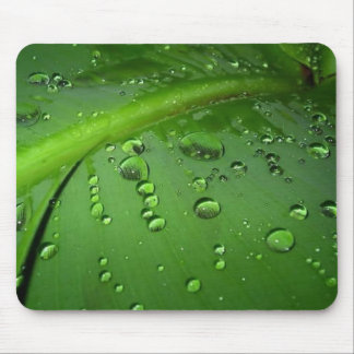 After rain mouse mat