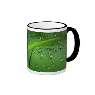 After rain mugs
