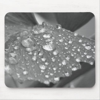 After the Rain Mouse Pad