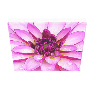 After The Rain Purple Dahlia Canvas Print
