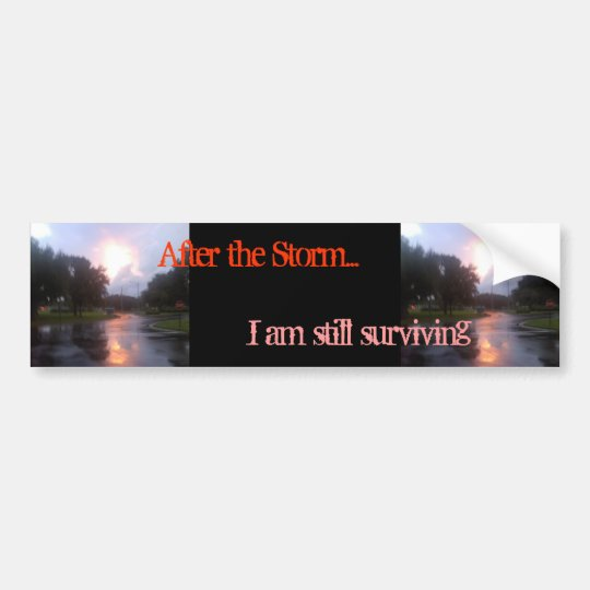 After the Storm Bumper Sticker