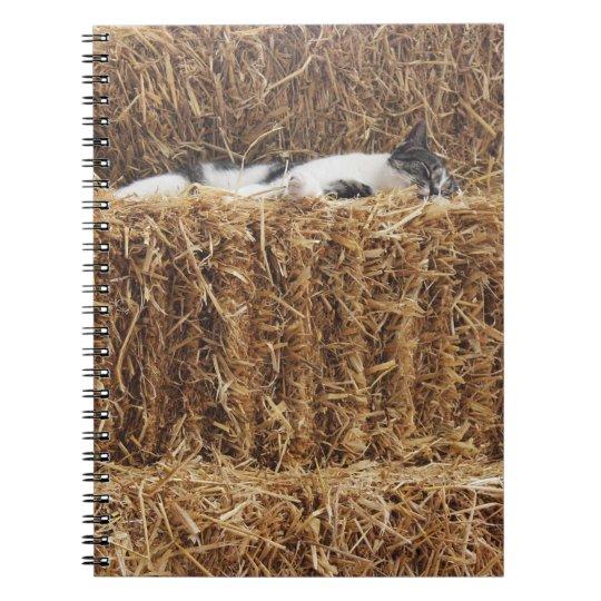 Afternoon Cat Nap Spiral Notebook