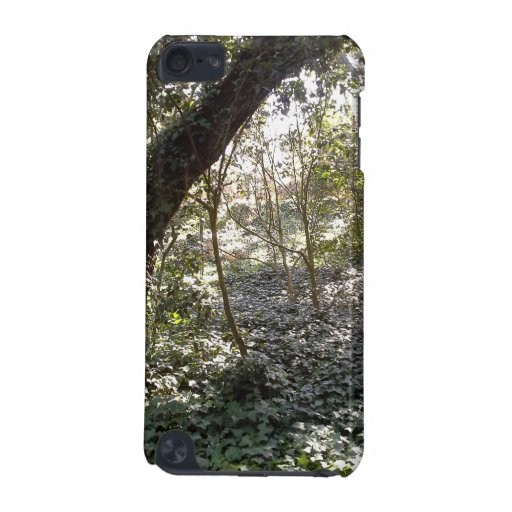 Afternoon Forest iPod Touch 5G Cover