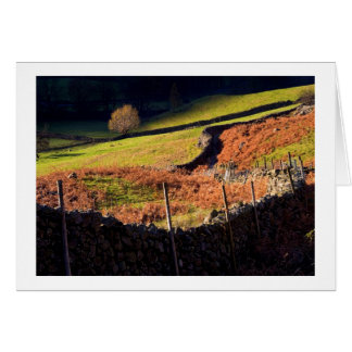 Afternoon light, Great Langdale, The Lake District Card