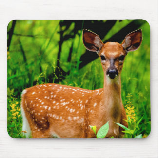 Afternoon of a Fawn Mousepad