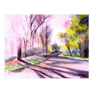Afternoon Sun on the Road, Ann Arbor, Michigan Postcard