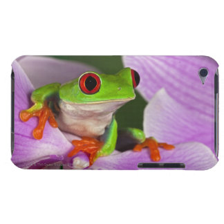 Agalychnis callidryas. Case-Mate iPod touch case