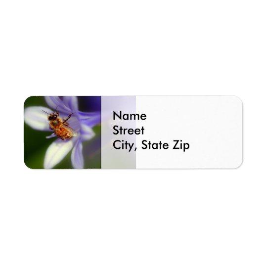 agapanthus africanus, Return Adress Label
