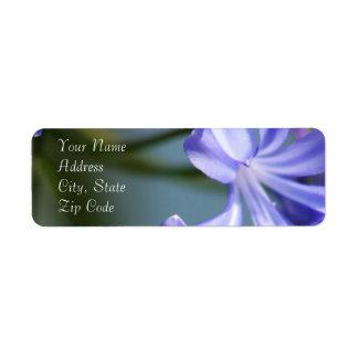 Agapanthus Flower Address Labels