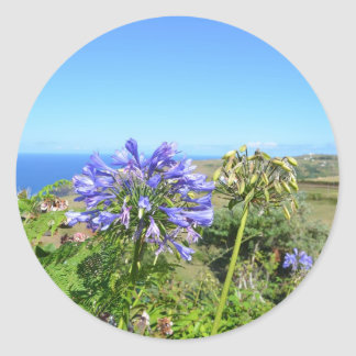 Agapanthus in the Azores Classic Round Sticker
