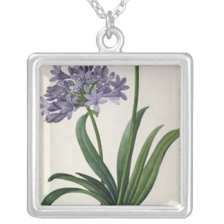 Agapanthus umbrellatus silver plated necklace
