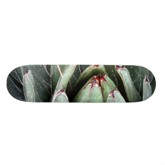 Agave Aloe Vera Plant Photo Skate Skate Board Decks