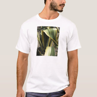 Agave Americana - Maguey T-Shirt