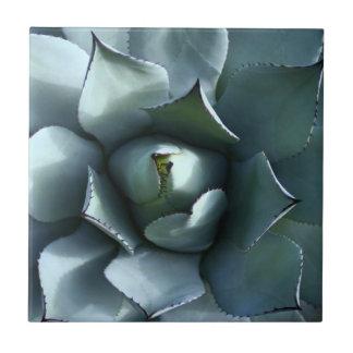 agave blue tile
