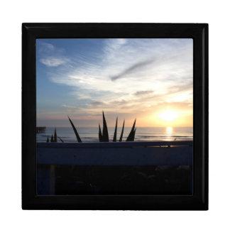 Agave Cactus Ocean Sunrise Gift Box