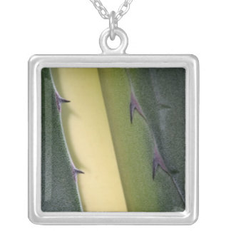 Agave Detail Silver Plated Necklace
