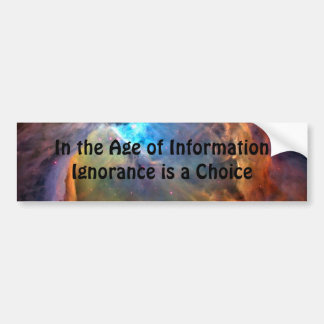 Age of Information Bumper Sticker