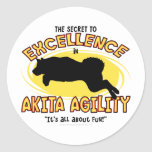 Agility Akita Secret