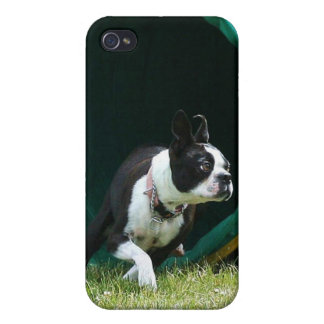 Agility Boston Terrier Speck Case Cover For iPhone 4