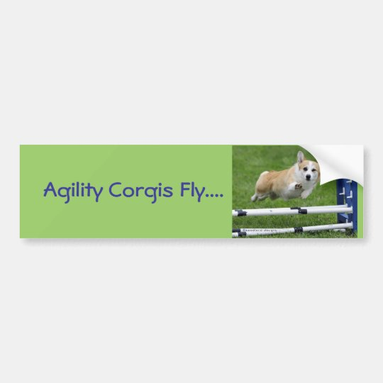 Agility Corgis Fly Bumper Sticker
