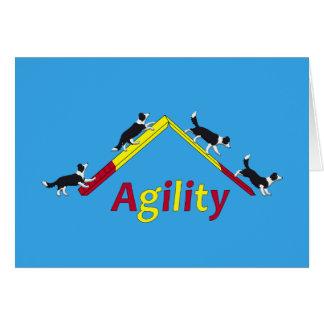 Agility dog card