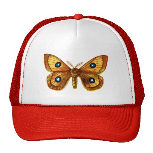 Aglia Tau Butterfly Hats