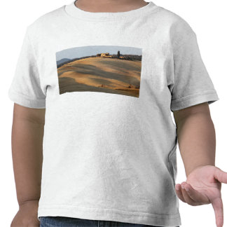 Agricultural field at sunset Val d Orcia Tusca Tshirts