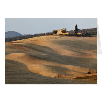 Agricultural field at sunset, Val d'Orcia, Tusca Card