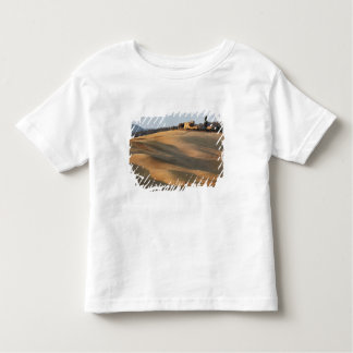 Agricultural field at sunset, Val d'Orcia, Tusca Toddler T-Shirt