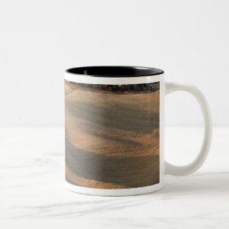 Agricultural field at sunset, Val d'Orcia, Tusca Two-Tone Coffee Mug