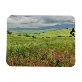 Agricultural field, Tuscany region of Italy. Magnet