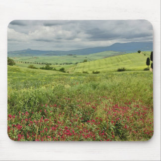 Agricultural field, Tuscany region of Italy. Mouse Mat