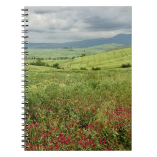 Agricultural field, Tuscany region of Italy. Note Book
