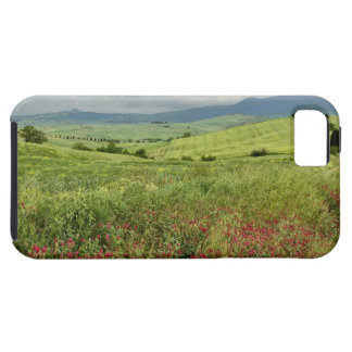 Agricultural field, Tuscany region of Italy. Tough iPhone 5 Case