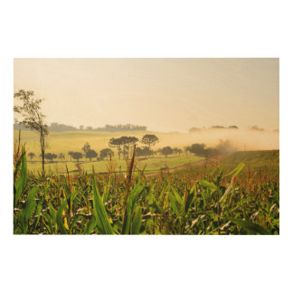 Agriculture Brazil Wood Wall Decor